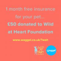 Plus £50 donation to Wild at Heart Foundation