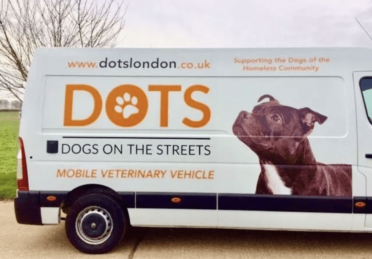 Helping London's street dog community