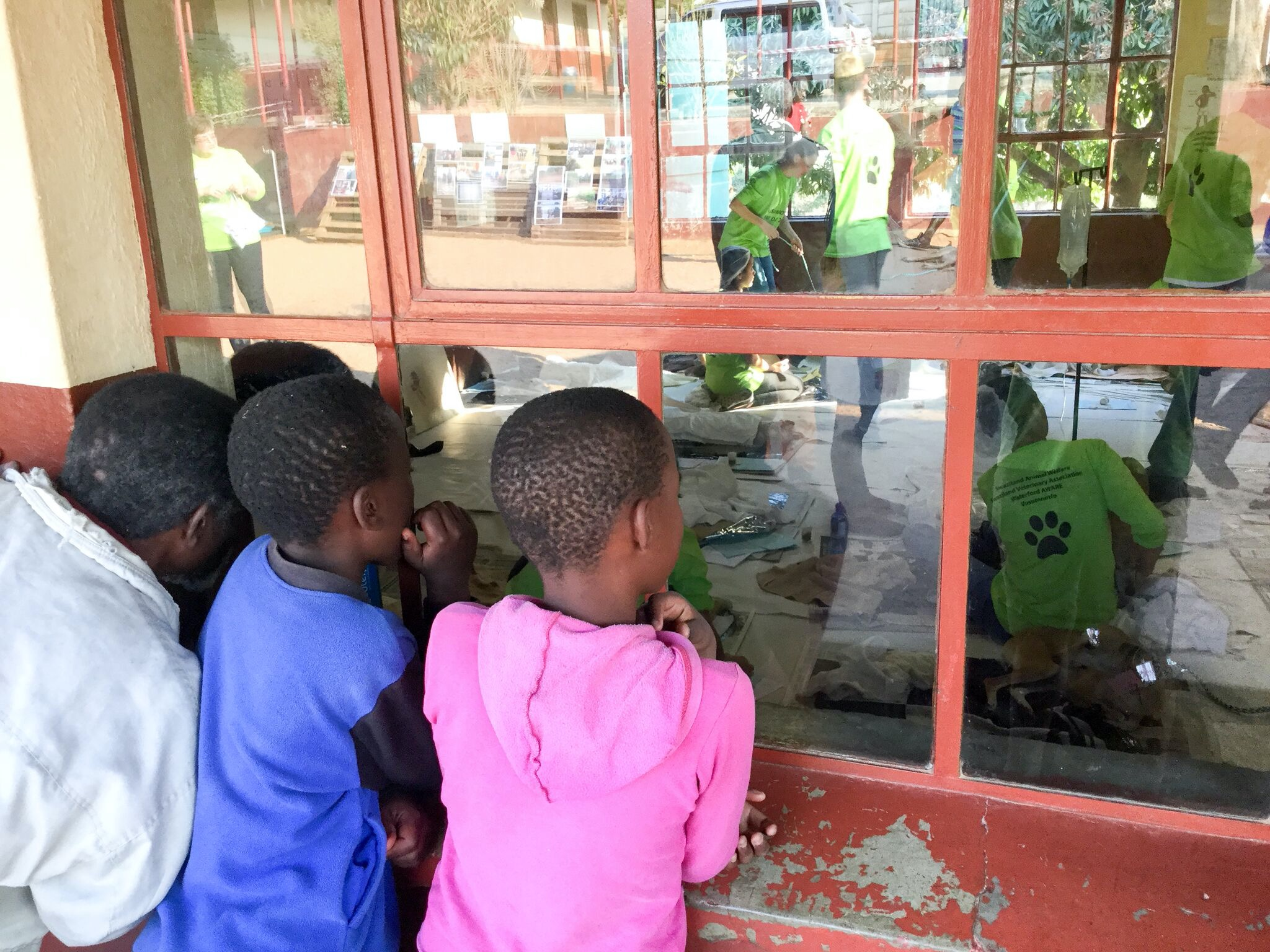 Teaching local children how to care for and respect dogs