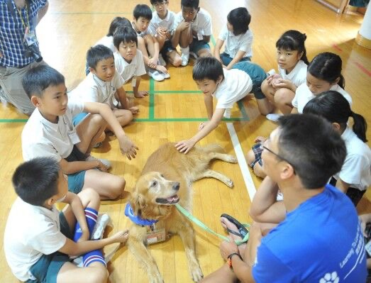 Helping children in Hong Kong and China to understand dogs