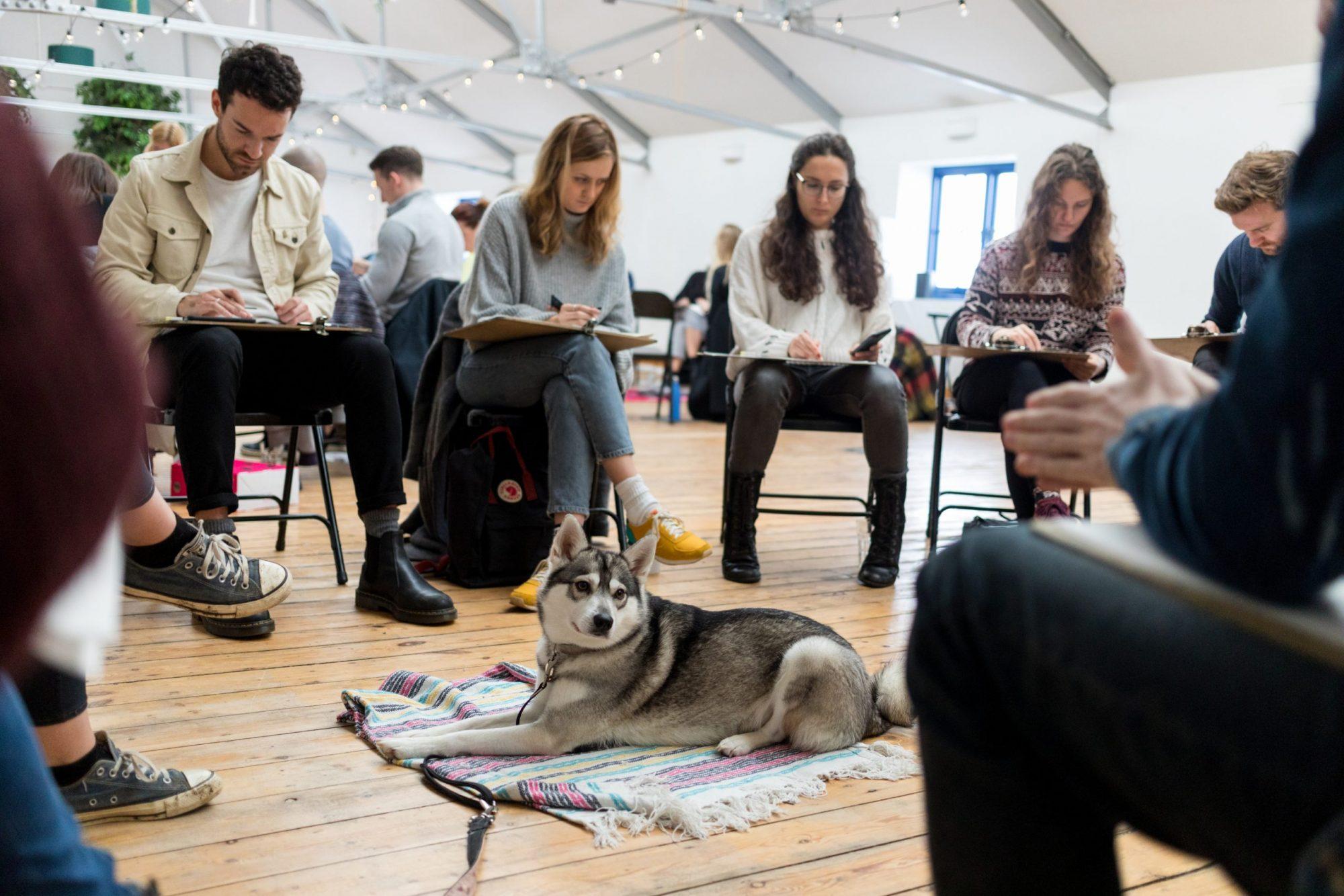 dog drawing class