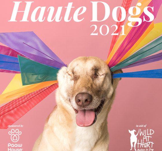 Haute Dogs 2021 Calendar